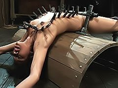 Video sexe BDSM ici